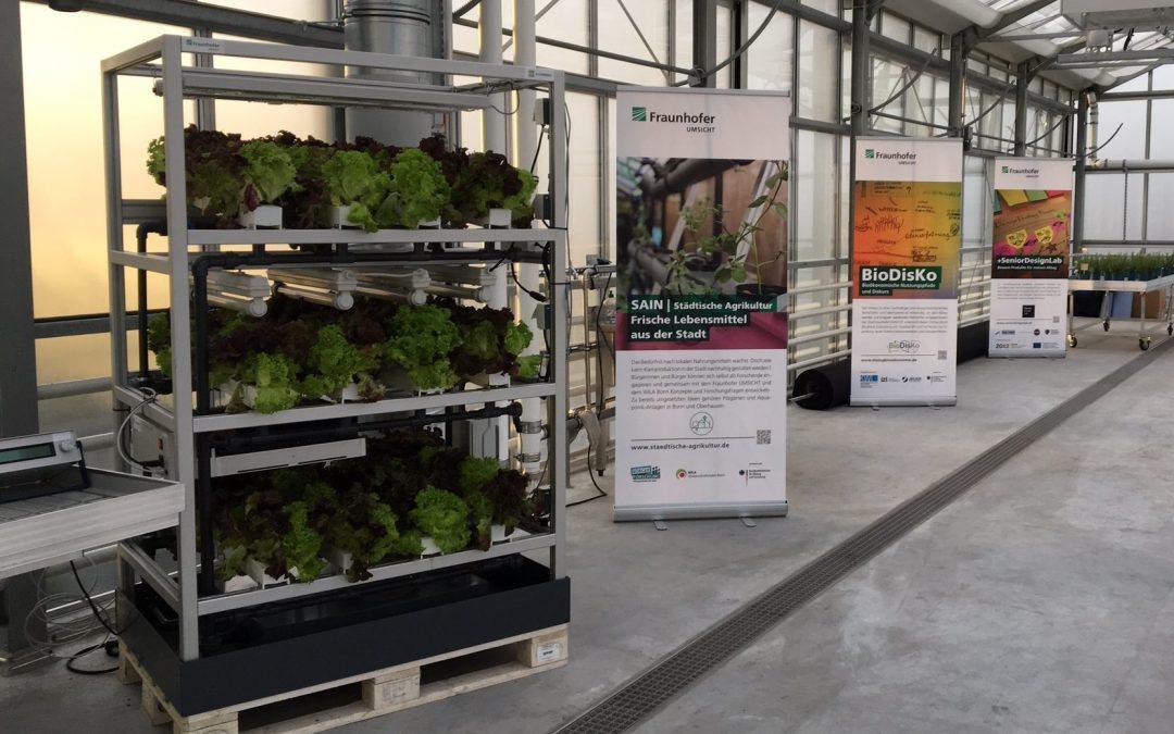 SAIN Projekt Poster auf der Forschungsfläche des Dachgewächshauses